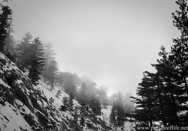 winter5 (1 of 1)