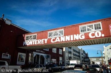 monterey1 (1 of 1)