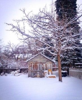 snow33 (1 of 1)